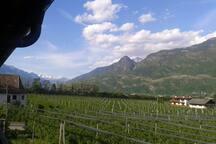 Franken als Weinland