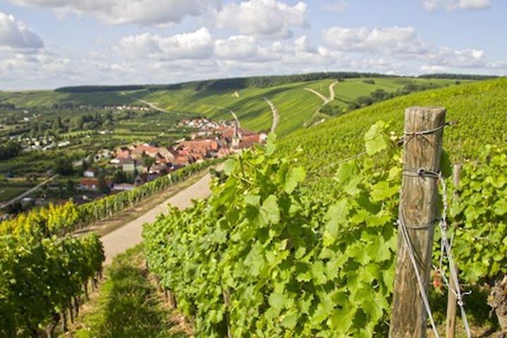 Fränkisches Weinland