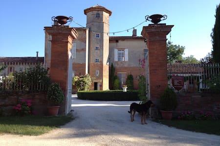 Château de Thégra - Balma