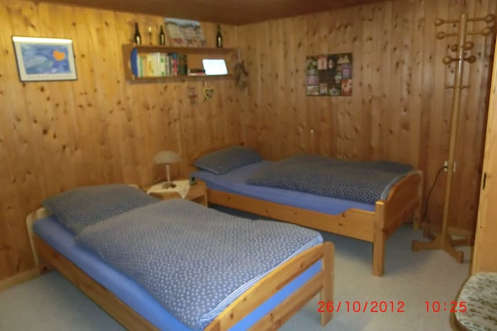 The best room near the Toys fair - Nuremberg - Bed & Breakfast