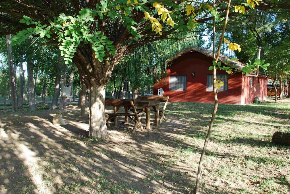 Cabaña 1 picnic area