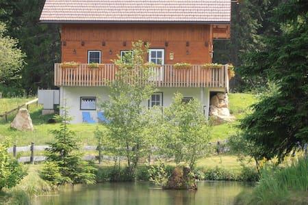 Holzhaus in waldreicher Höhenlage - Gams bei Hieflau