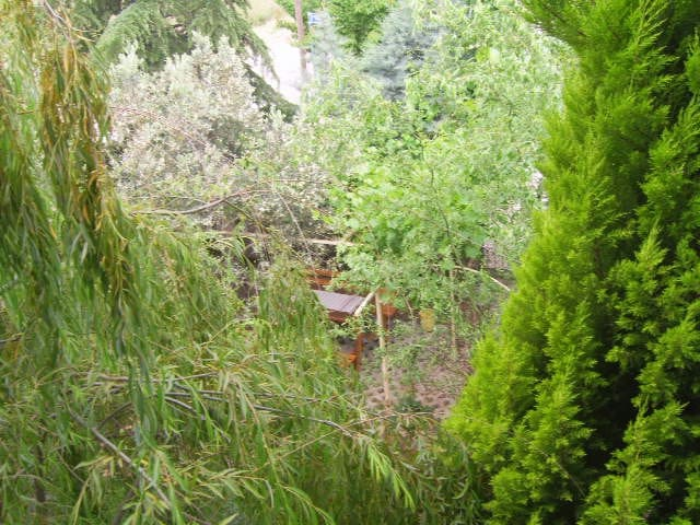 Samimi ve huzurlu - Altınova - 別荘