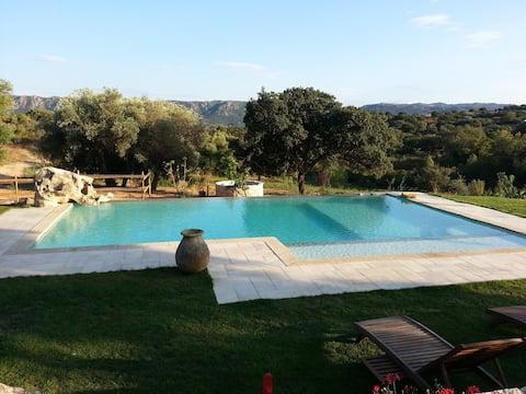 B&B met zwembad. Zee & platteland