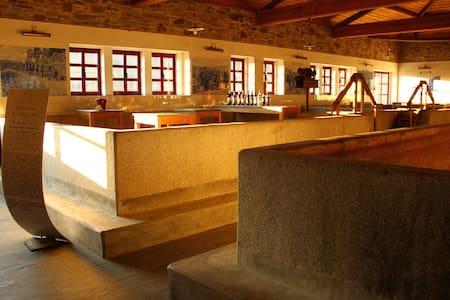 Casa Calços do Tanha B&B - Douro - Vilarinho dos Freires