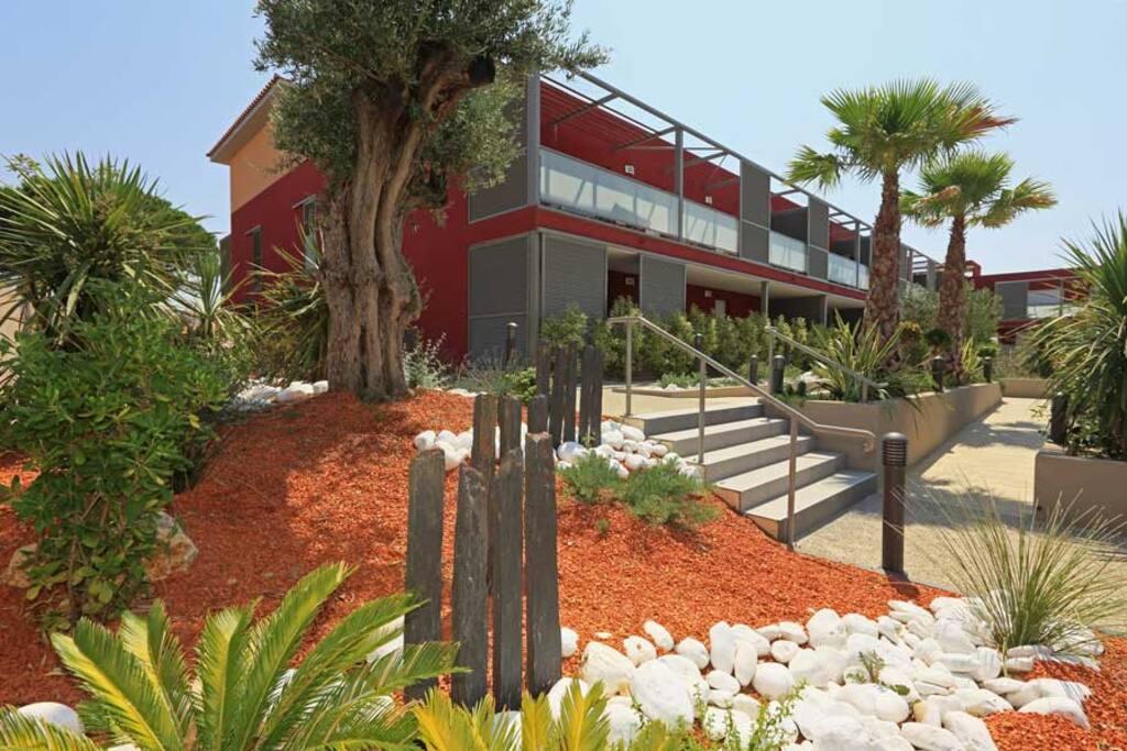 Résidence moderne datant de 2013, avec paseo traversant un jardin composé de palmiers, d'essences, de senteurs et de jeux d'eau.