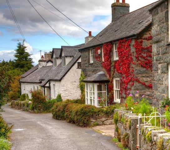Bryn Afon a idyllic country cottage - Rowen - Dům