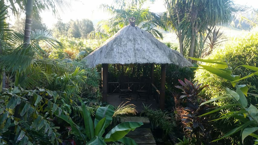 The Bamboo House - Coolangatta