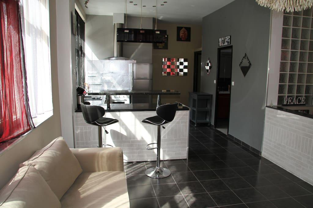 superbe logement de 115m lille maisons louer lille nord pas de calais france. Black Bedroom Furniture Sets. Home Design Ideas