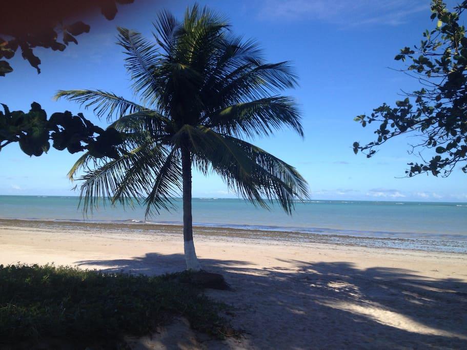 Praia calma e nativa.Excelente para fazer caminhadas.