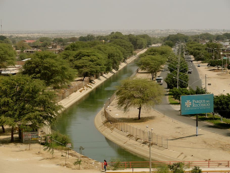 Water channel flanked with algarrobos trees in front of apartment