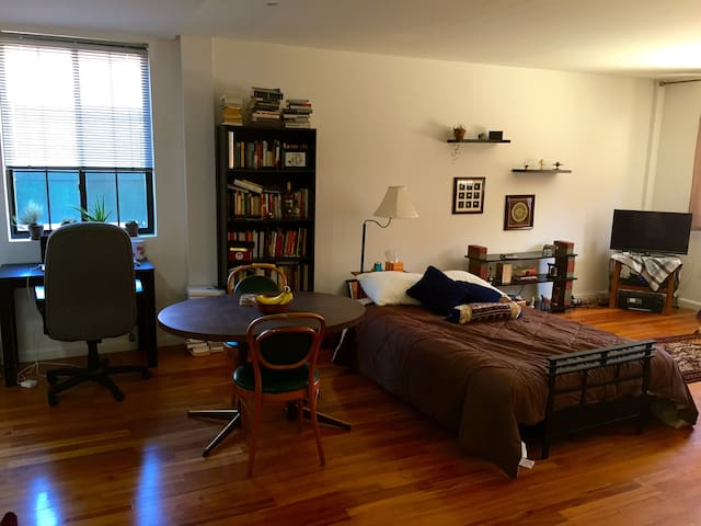 Spacious Artful One Bedroom Apartment Brooklyn Flats For Rent In Brooklyn New York United