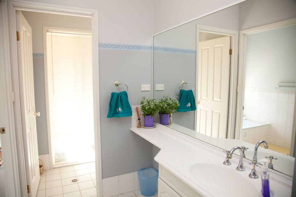Bathroom area for guests