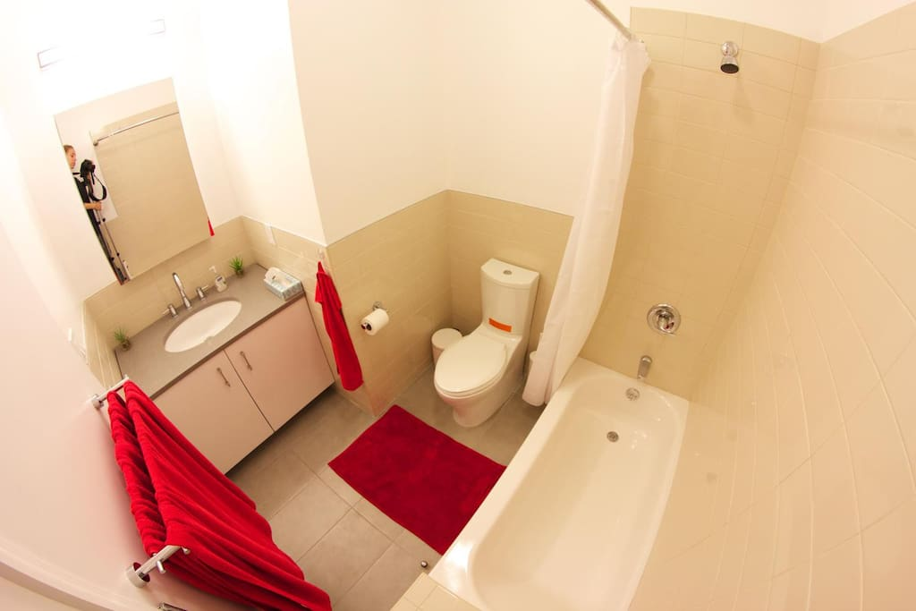 I Bedroom W Private Bathroom Flats For Rent In New York New York United States