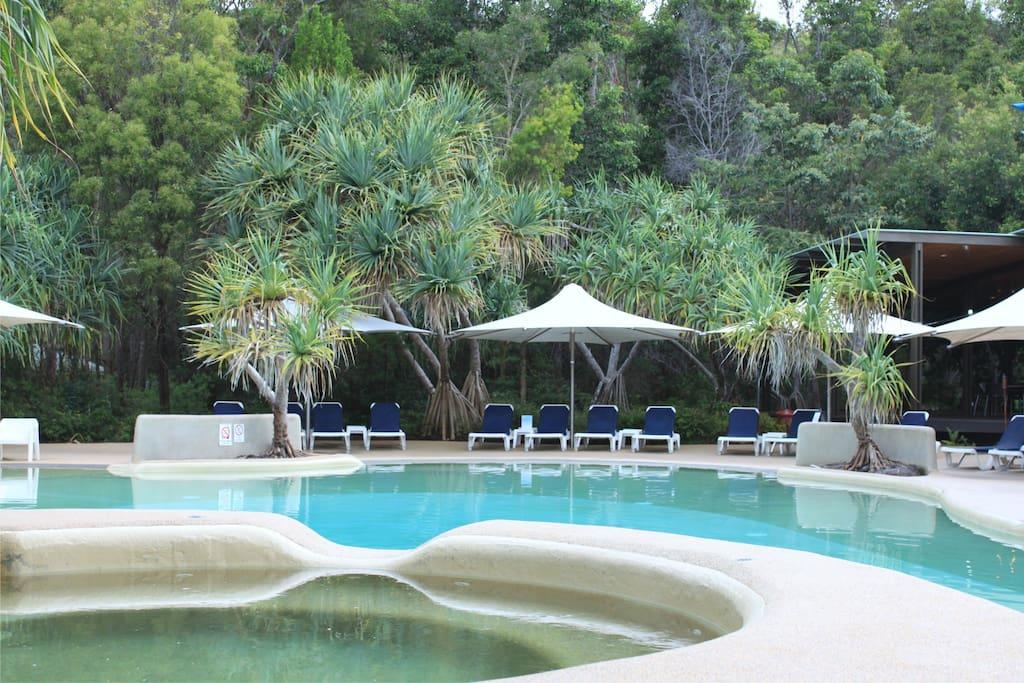 Stunning heated pool and spa