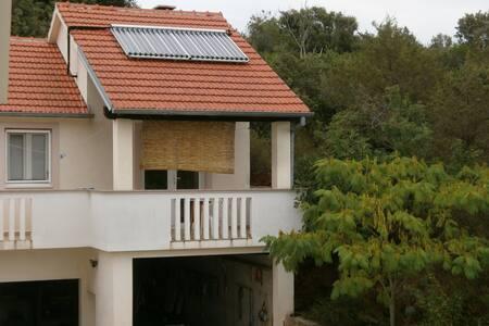 holiday home slanac - Žman - Haus