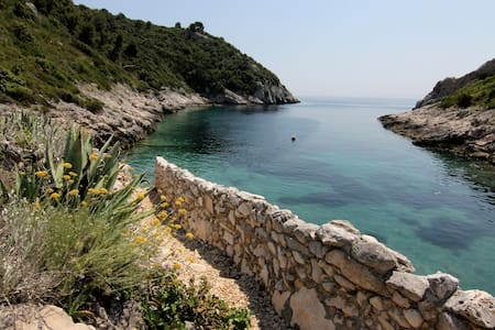 Stone cottage in a secluded cove - Maslinica - Casa