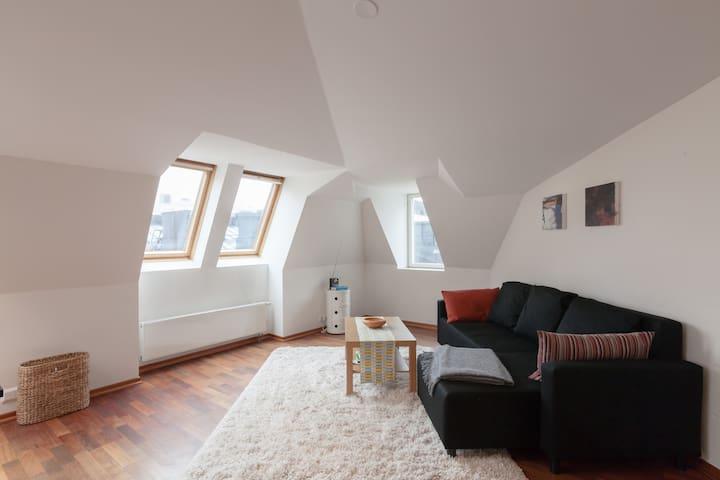 penthouse in the center of Helsinki - Helsinki - Apartament