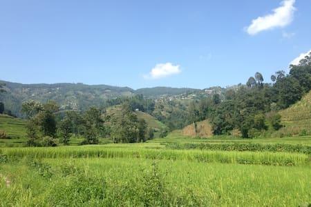 Rural family home in rice fields - Tukucha Nala