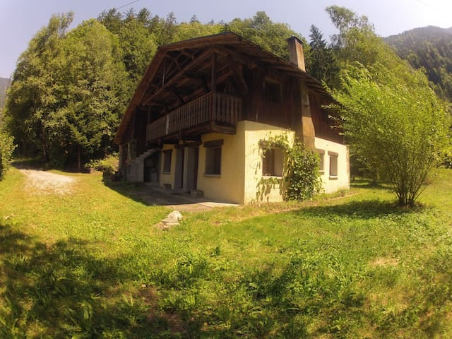 Spacious Savoyard Chalet - Villard-sur-Doron - Casa