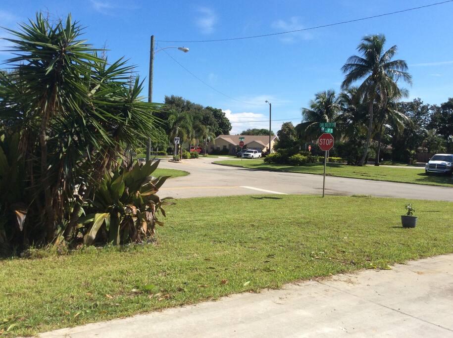 My neighborhood-quiet residential