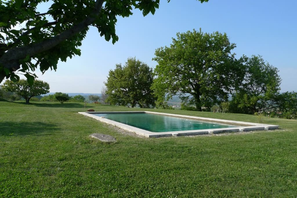 piscine, jardin ombragé et ensoleillé