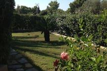 giardino della villetta