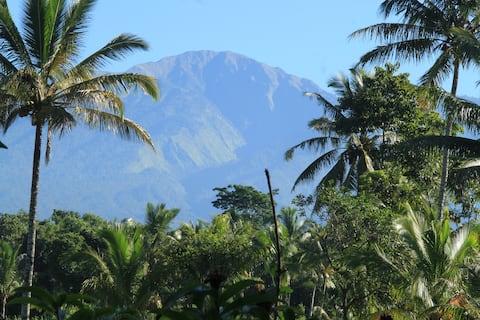 Brigadoon Lombok Tetebatu