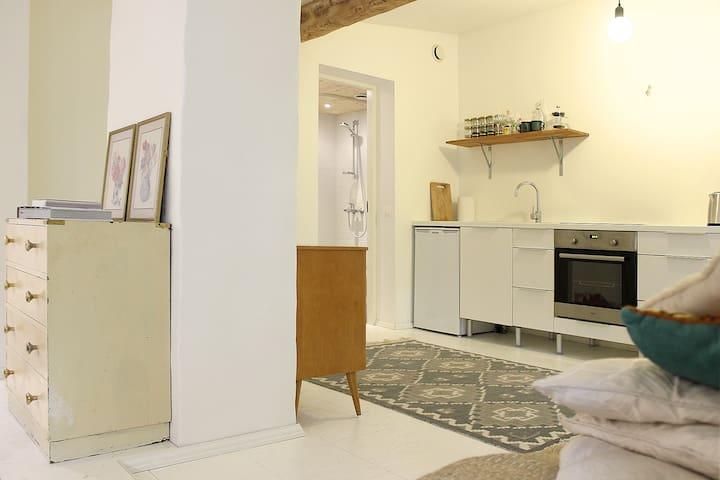 Comfy studio in city center