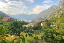 View towards Kotor from the middle garden.
