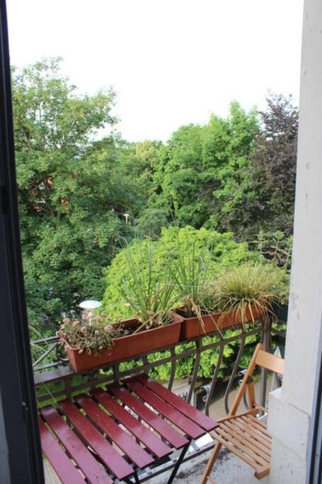 Blick ins Grüne vom Südseitenbalkon