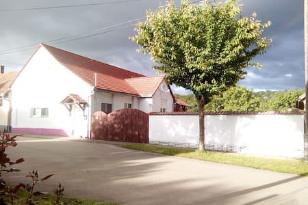 Pension Weiße Rose Baranya nahe Mohács