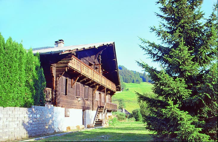 160 m² apartment Chalet Anthamatten in Champery