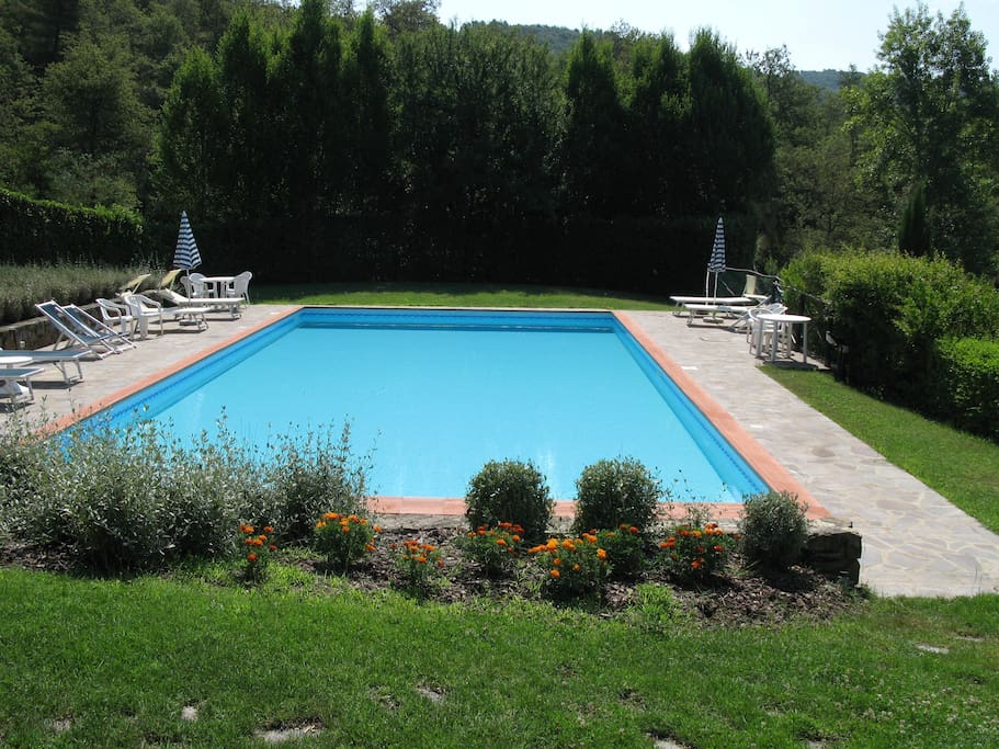 Big Swimming Pool 17x12 meters