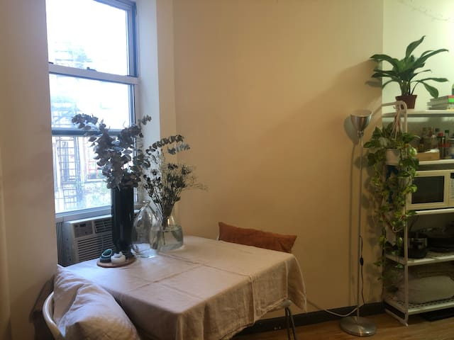 Quiet East Village Room, Tompkins Square Park