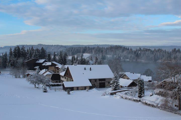 Appartement avec vue sur le lac - Malbuisson - Квартира