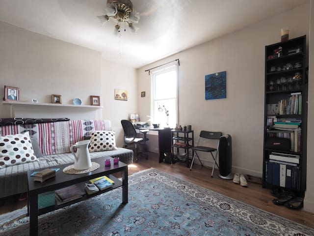 A living room with futon as a bed - Baltimore - Flat