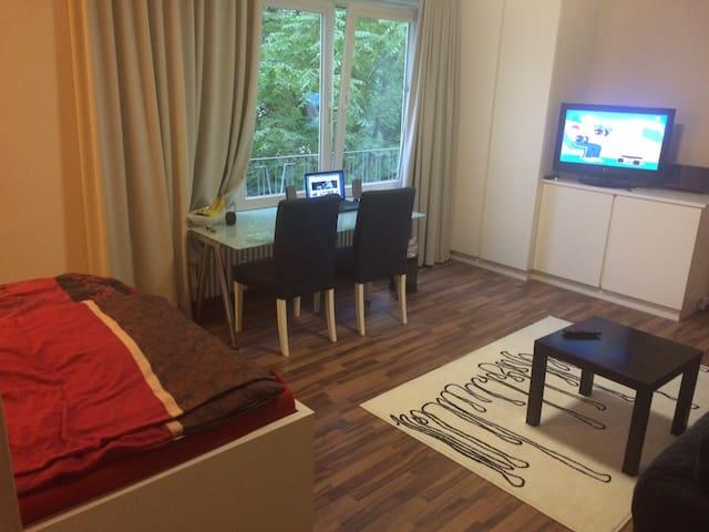 Schönes großes Appartement - München - Wohnung