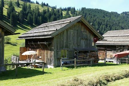 Berghütte für Ruhesuchende Liechtenstein Steg