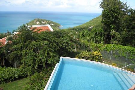 Private villa, Windjammer Landing - Castries City