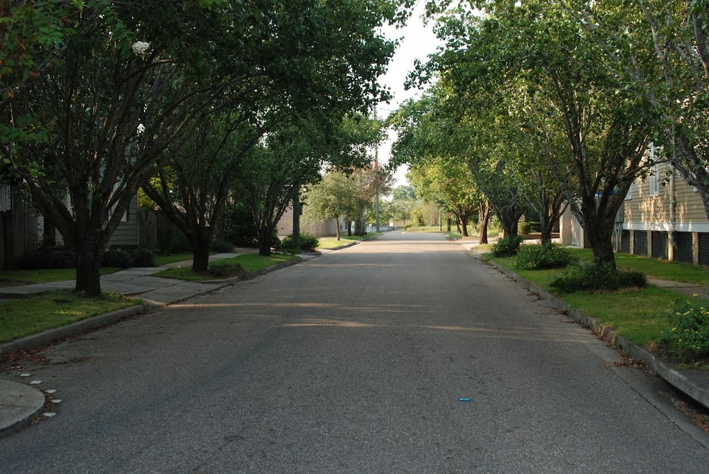 Our Street leading to Government Street(leads to downtown 5 min)