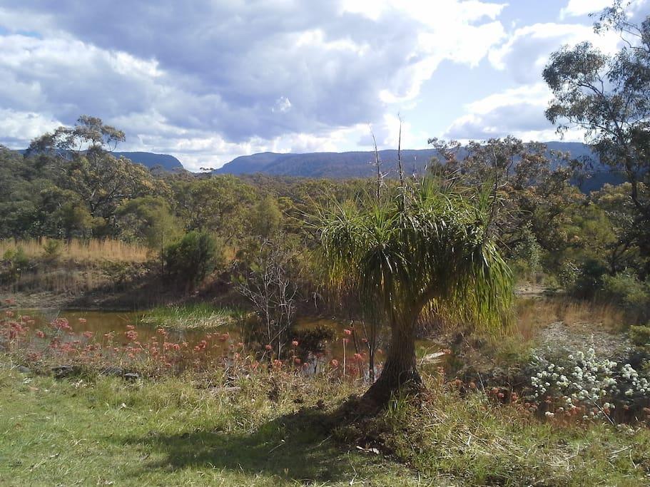 Property overlooks Wheeney Gap