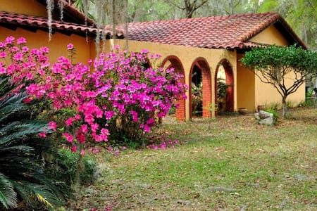 Beautiful Ocala Horse Country Home - Ocala