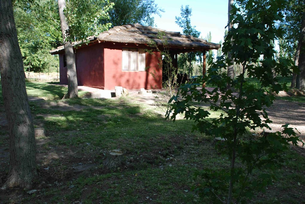 Cabanas El Bosque