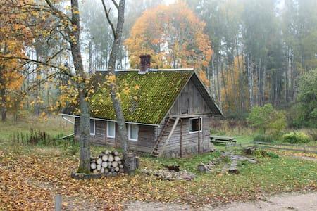 Wild'ness Retreat in Gauja  Park - Wild Moss cabin