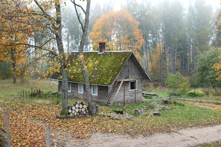 Wild'ness Retreat in Gauja  Park - Wild Moss cabin