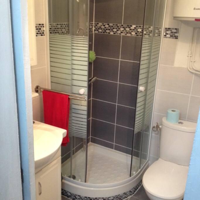 Salle d'eau très fonctionnelle avec douche massage