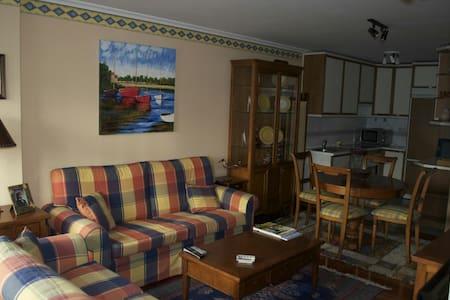 Apartamento en el centro de Baiona - Baiona - Lejlighed