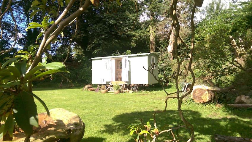 Lovely Dartmoor Shepherd's Hut B&B - Aish