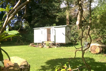 Lovely Dartmoor Shepherd's Hut B&B - Aish